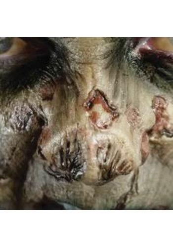 Zombie FX Transfers - Zombie Nose