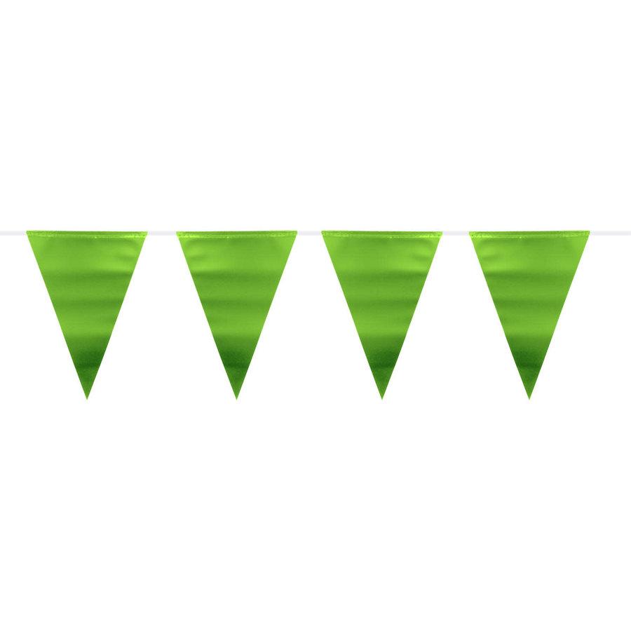 Vlaggenlijn Metallic Mat Lime Groen - 6 mtr-1