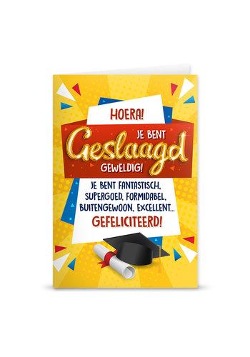 Wenskaart Geslaagd Balloon - Hoera Je Bent Geslaagd Geweldig!