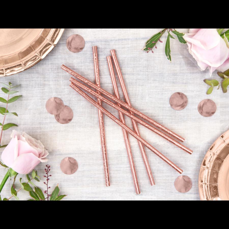 Papieren rietjes - rose goud - 19,5 cm - 10 stuks-2