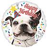 Anagram Folieballon Happy Birthday Dog
