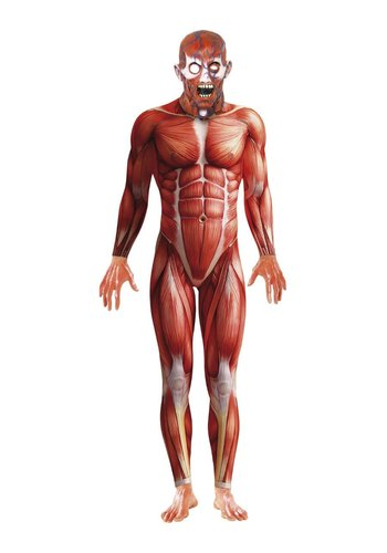 Anatomy Man kostuum