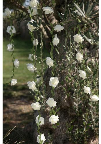 Roses garland White