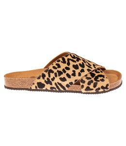 BioBio biobio 73675 Leopardo
