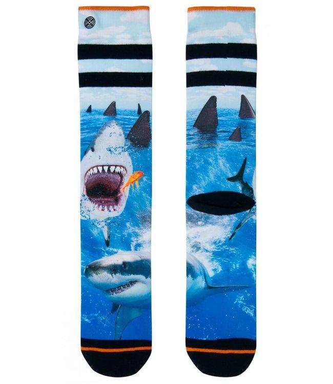 XPOOOS XPOOOS Socks Shark