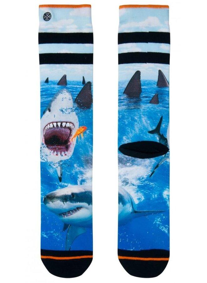 XPOOOS Socks Shark