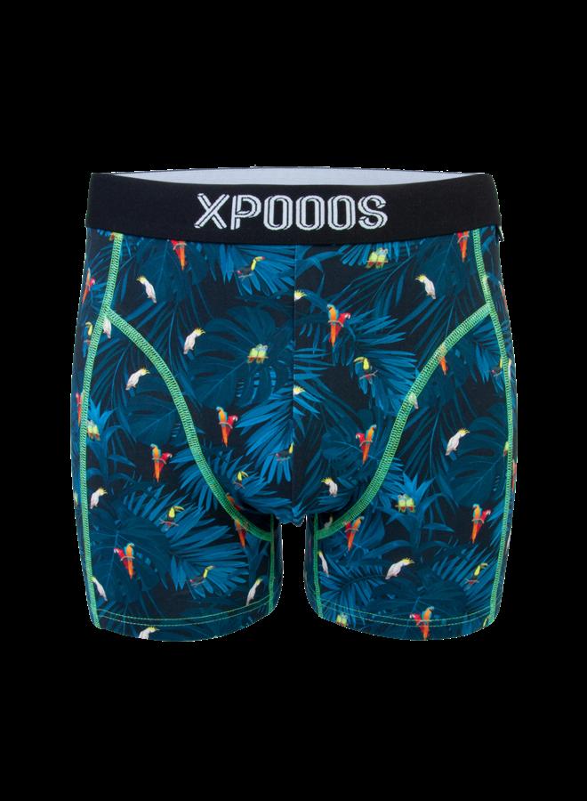 Xpooos men boxer birds