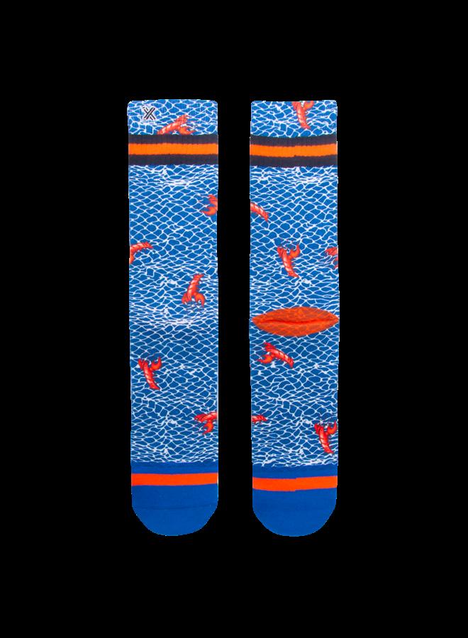Xpooos socks & AFNF lobsters