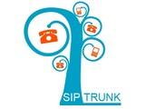 SIP Trunk