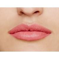 wild with desire lipstick- pretty vacant