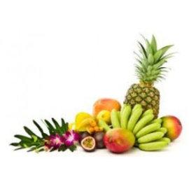 Paisley BHZ Bavarois Tropical