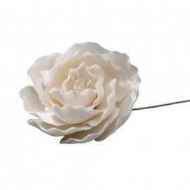 Suikerbloem Wilde Roos - Wit - 7.5cm