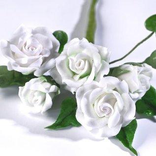 Renshaw Renshaw Flower & Modelling Paste -Wit- 250g