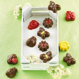 Silikomart Silikomart Chocolate Mould Spring Life