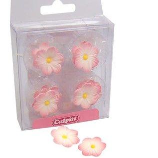 Culpitt Culpitt Suikerdecoratie Daisy Pink pk/12