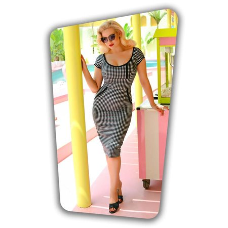 Dita Pencil Dress in Gingham