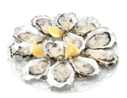 鲜活生蚝(12个) oesters