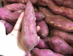 Sweet Potatoes Red(1kg)