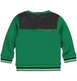 Quapi Quapi trui Martinus green