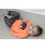 Bampidano Bampidano broekje with front pocket stripe grey stripe