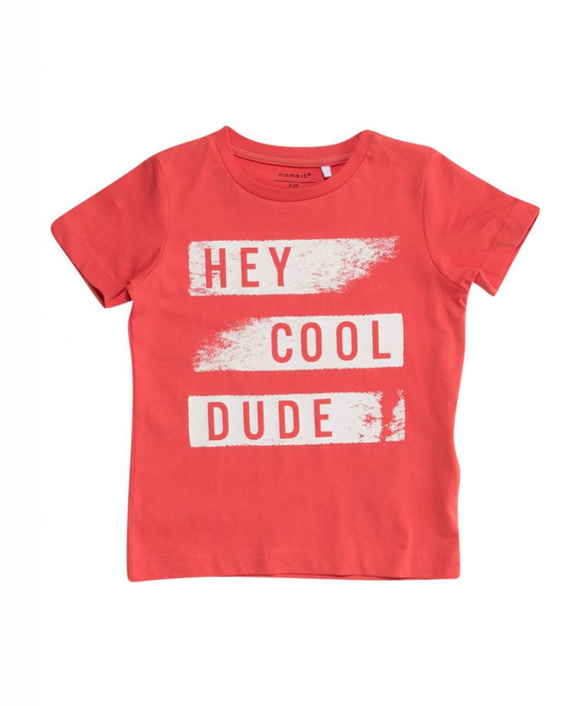 Name It Name It T-shirt Fabullero spiced coral