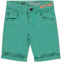 Short Sil mint triangle