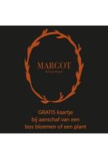Margot Bloemen - Westmaas