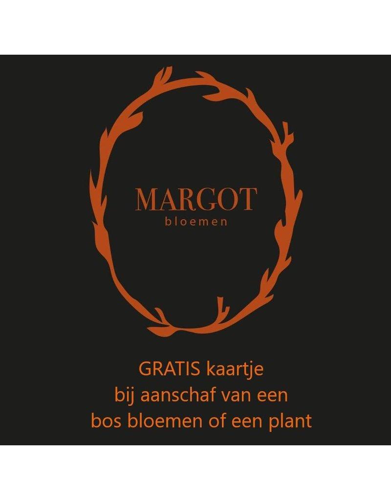 Onbeperkt gratis kaartje bij bos bloemen bij Margot Bloemen in Westmaas