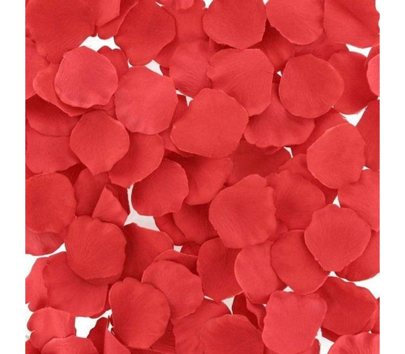 Red rose petals rozenblaadjes