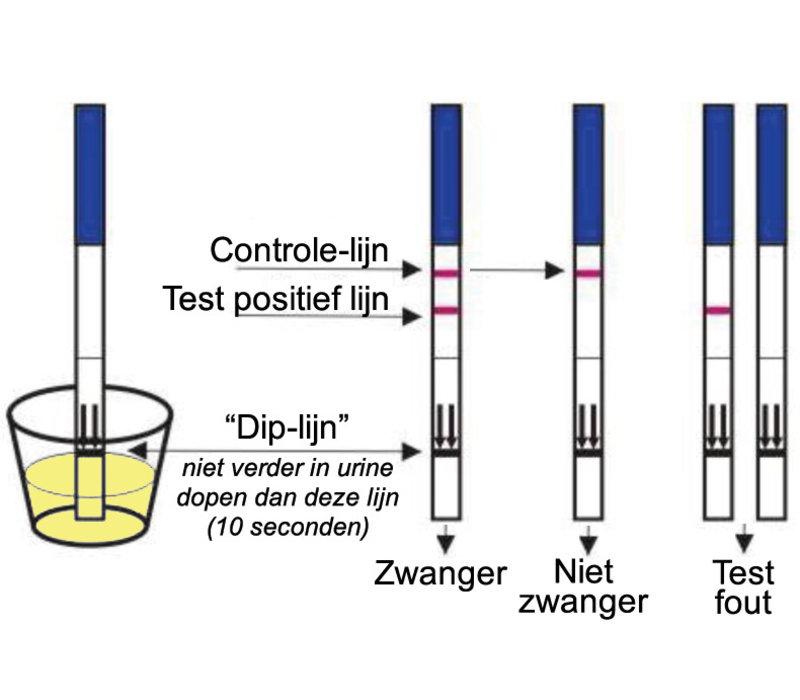 Zwangerschap Test Dipstick