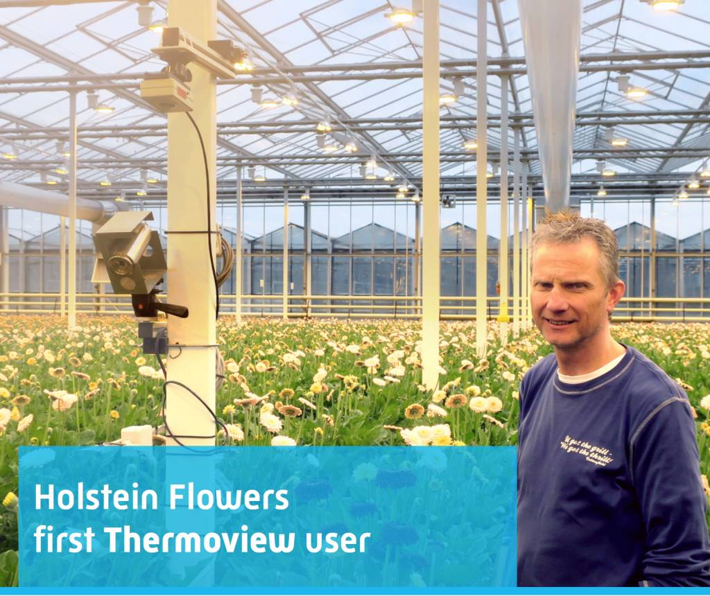 Holstein Flowers first Thermoview user