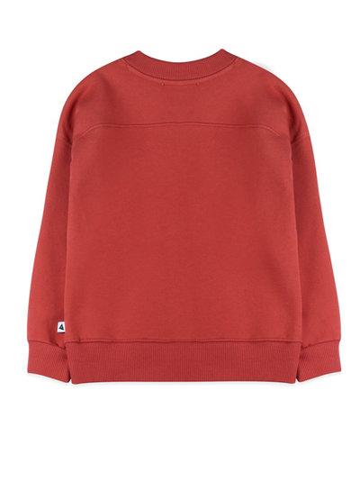 Ammehoela Sweater Rocky in warm red