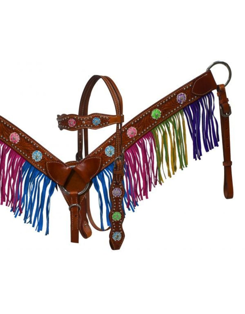 Showman ®  Medium leather headstall and breast collar with mulit colored fringe and painted flowers.