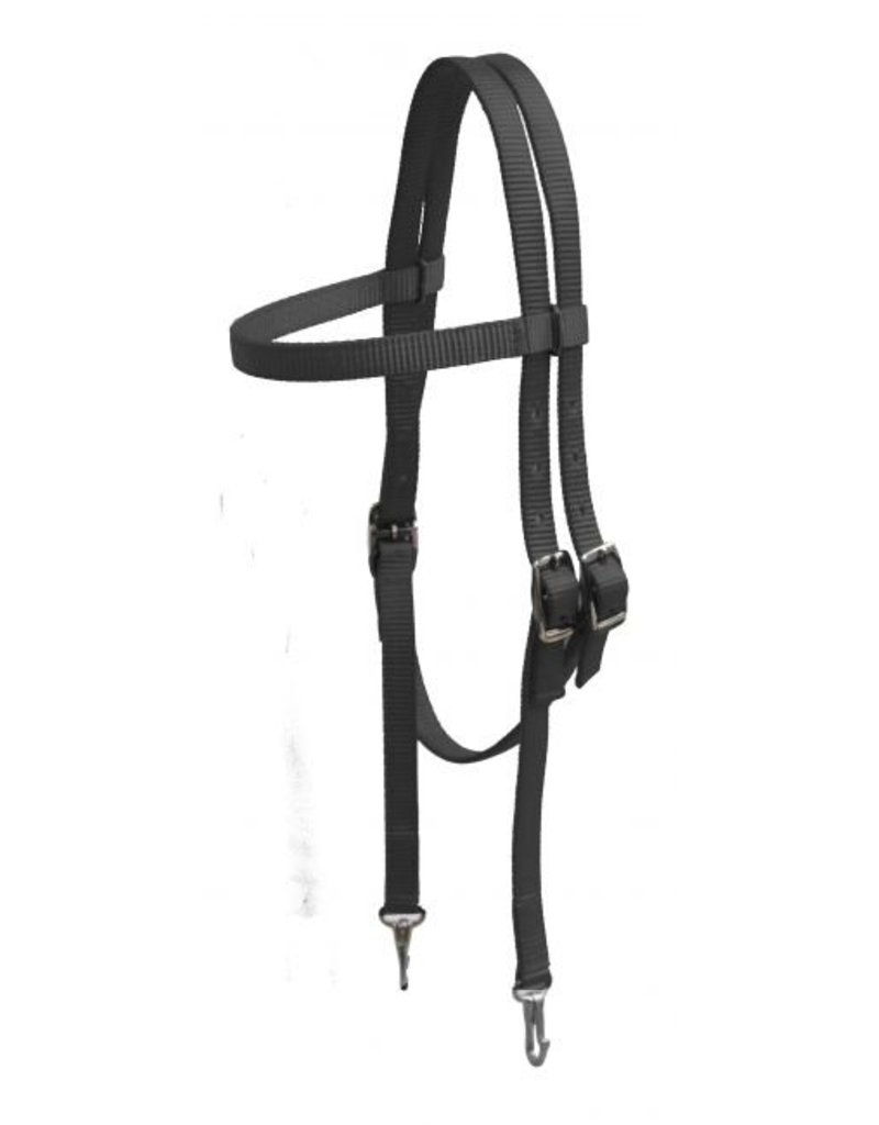 Showman ® Premium nylon brow band headstall with snaps.