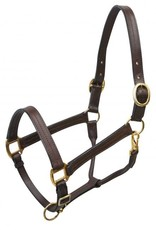 Showman ® Large horse size (1100-1600lbs) leather halter with brass hardware.