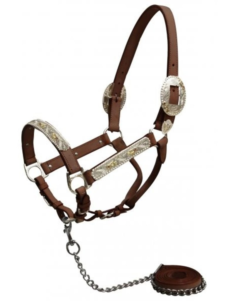 Showman ® Showman horse size engraved silver show halter with Pink Rhinestones.