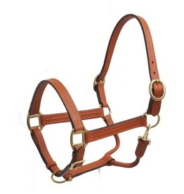 Horse size leather halter with brass hardware.