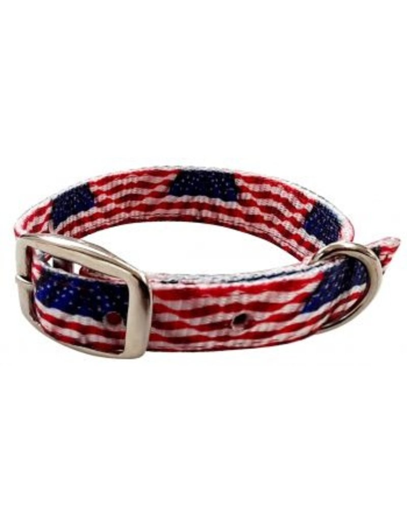 Showman ® Showman Couture ™ American Flag designed nylon dog collar.