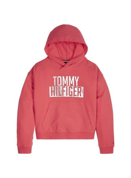 Tommy Hilfiger Hoody Sweat Essential Logo KG0KG04039616