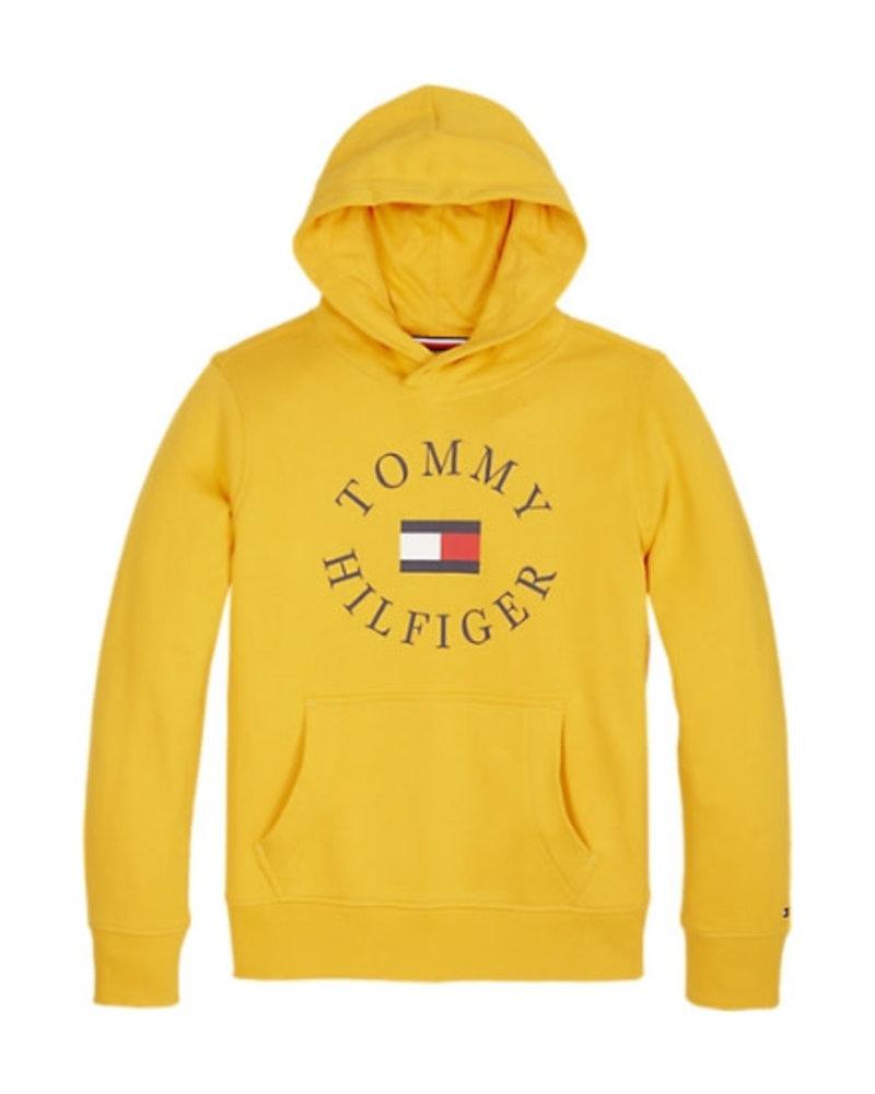 Tommy Hilfiger Hoodie Hilfiger Logo KB0KB04661720