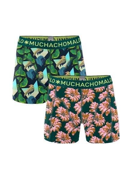 Muchachomalo Short 2-pack DiGNT1010-041