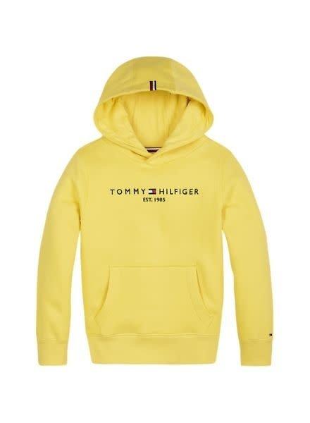 Tommy Hilfiger Hoodie Essential KB0KB05057ZAG