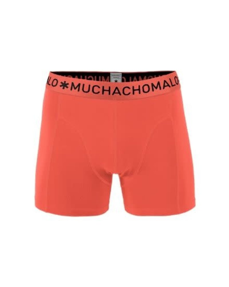 Muchachomalo Short 1-pack CANS10101-04J