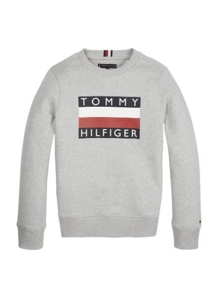 Tommy Hilfiger Sweater Ess.  KB0KB05474P01