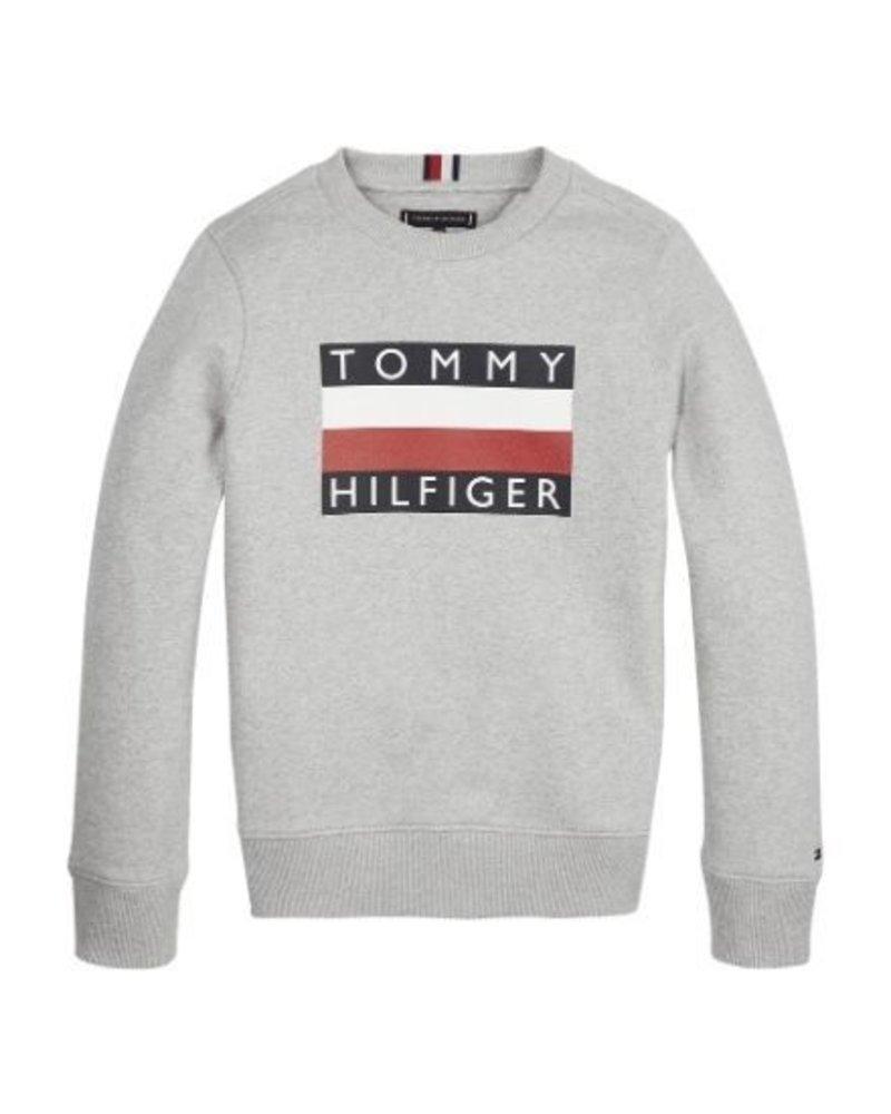 Tommy Hilfiger Sweater Ess.  KB0KB05474P01