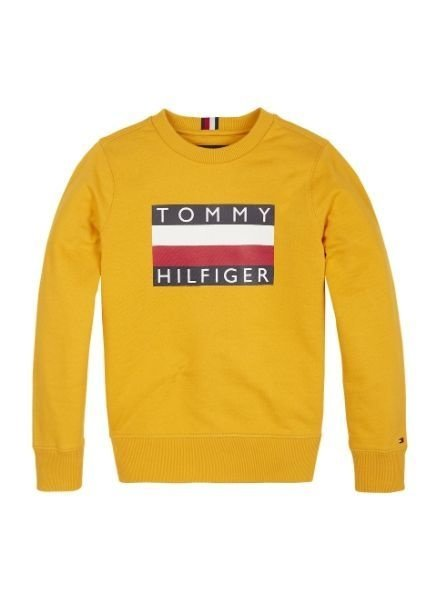 Tommy Hilfiger Sweater Ess.  KB0KB05474ZBC