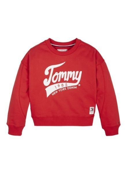 Tommy Hilfiger Sweater Tommy 195    KG0KG04955XA9