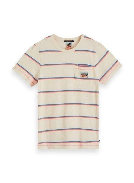 Scotch Shrunk T-shirts Yarn dyed stripe 154880