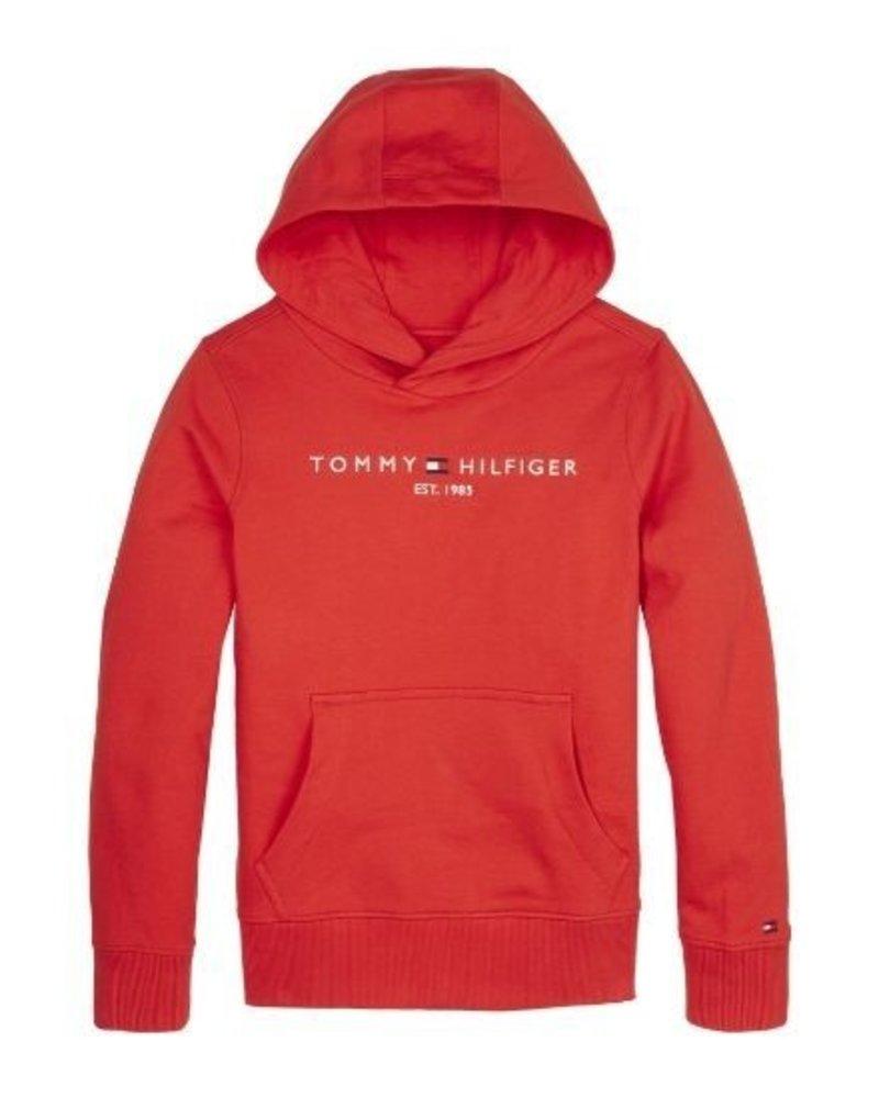Tommy Hilfiger Hoody ESSENTIAL   KB0KB05673XNL