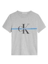 Calvin Klein MNG Stripe ss T